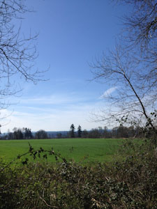 Bike Trail View Field