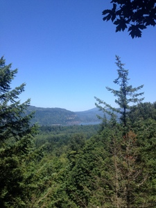 View from Unofficial Lookout Point, Latourell Falls
