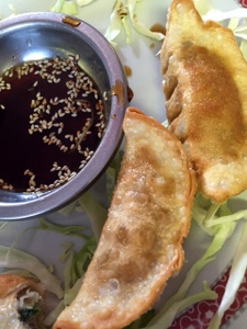 Pot Stickers, Shanghai Cafe, Centralia, Washington